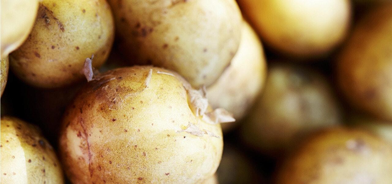 10 Madvarer Der Ikke Skal I Koleskabet Spis Bedre